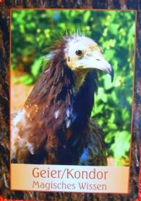 Kartenquelle: Krafttier-Orakel von Jeanne Ruland