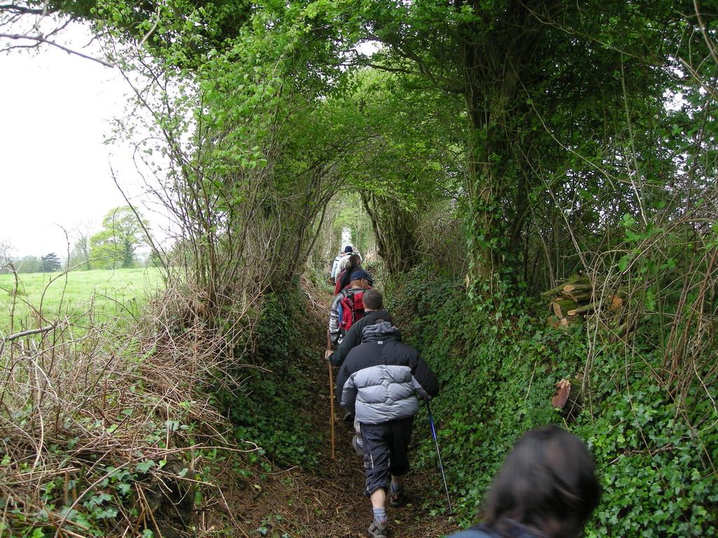"""Passage dans le dernier chemin ouvert cette année, le chemin rural n° 10  dit  """"chemin de l'église au Hameau Durand"""""""