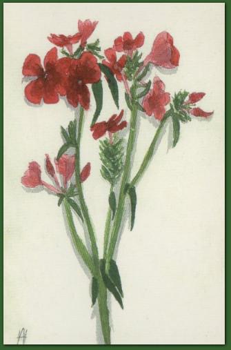 Рисунок Вел. Кн. Анастасии, подаренный отцу, 1915 г.
