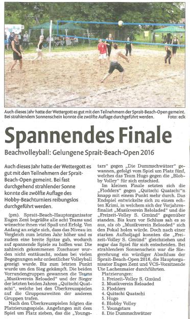 Zeitungsartikel der Remszeitung vom 29.06.2016