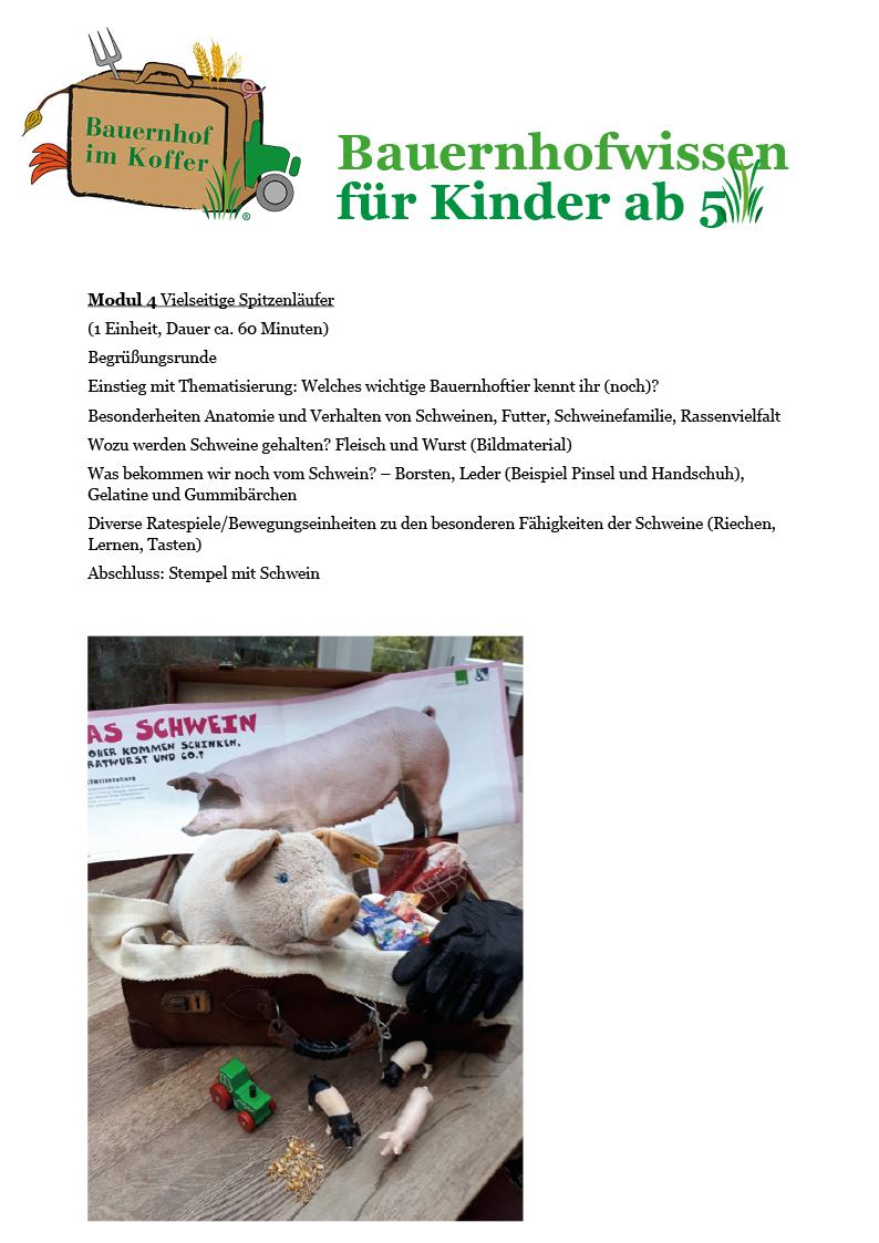 Erfreut Anatomie Eines Gummibärchen Galerie - Anatomie Ideen ...