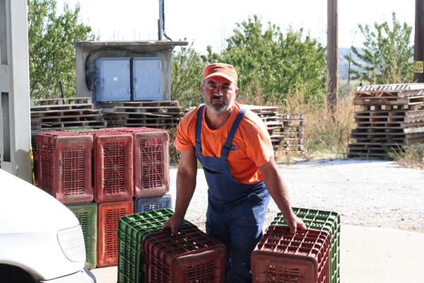 Pangaea Olivenöl aus Griechenland –vor der Olivenölmühle