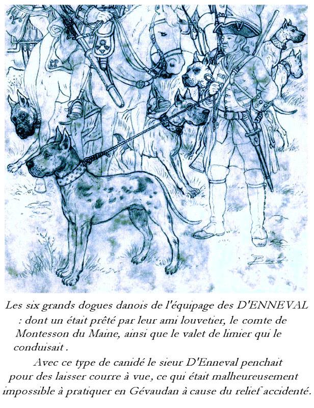 Les chiens utilisés par les sieurs d'Enneval