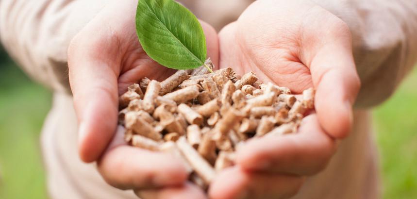 Regenerative Energien gehören fest zu unserem Leistungsspektrum bei Naujocks - Sanitär, Heizung und regenerative Energien