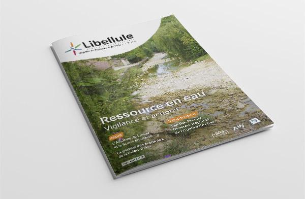 """Réalisation du premier numéro du magazine """"Libellule"""" du SR3A"""