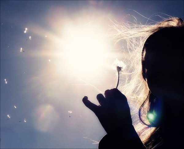 Lo que niegas, te somete. Lo que aceptas, te transforma. (Carl Jung)