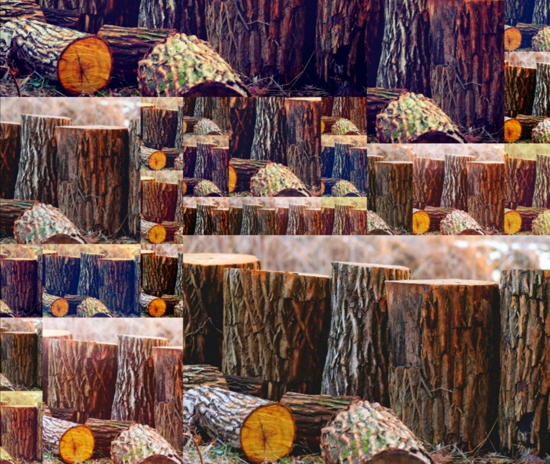 Holz bringt Wärme