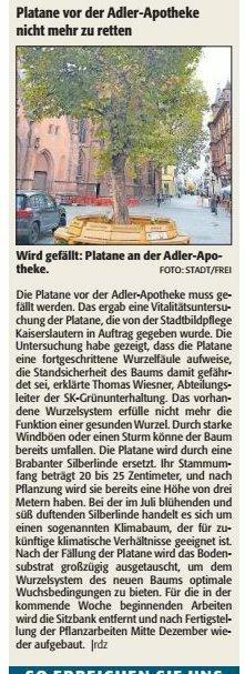 Verein für Baukultur und Stadtgestaltung Kaiserslautern e. V. - Platane