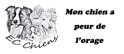 mon chien a peur de l'orage ; apaiser un chien pendant l'orage ; chien qui a peur de l'orage ; orage chien ; mon chien se cache pendant l'orage ; chien a peur du tonnerre ; éducateur comportementaliste canin ; educateur canin ; habituer chien aux orages