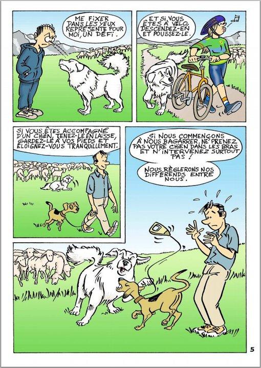 ec chiens que faire si un chien de troupeau attaque mon chien, que mon chien se fait attaquer par un autre chien