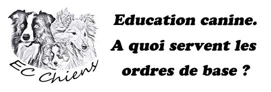 ec chiens ; education canine ; comment eduquer son chien ; pourquoi eduquer un chien ; apprendre au chien a obeir ; apprendre au chien a marcher au pied ; eduquer son chien ; eduquer un chien ; eduquer son chiot ; eduquer un chiot