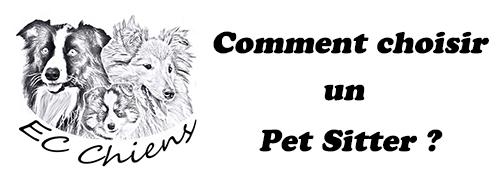 Ec chiens educateur canin comportementaliste comment choisir un pet sitter pour son chien