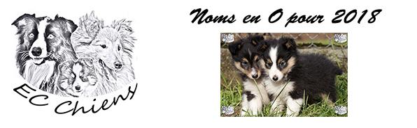 ec-chiens propose une liste de noms de chien en O pour l'année 2018 pour les chiens nés lof et les autres pour aider les maîtres a trouver des idées de noms de chien 2018. article proposé par un educateur canin comportementaliste