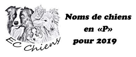 noms de chiens en p ; année des p lettre chien ; prenom chien lettre p ; lettre chien 2019 ; nom chien 2019 ; prenoms chien 2019 ; lettre de l'année chien ; noms de chiens en p pour 2019