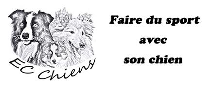EC Chiens vous explique comment faire du sport avec son chien, promener son chien, pratiquer agility pistage mondioring obéissance troupeau chasse traineau canicross canirando canibike et quel éducation chien est nécessaire