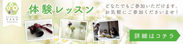 まとりかりあ写真教室横浜 体験レッスンバナー