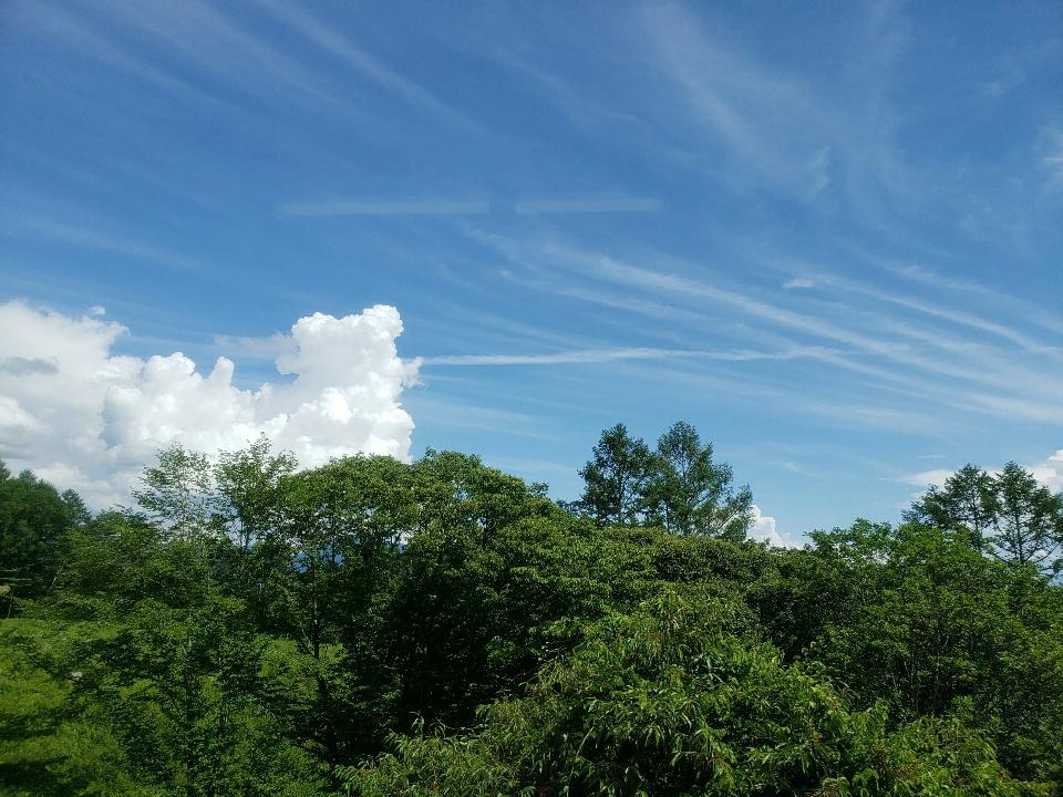 夏の青空を撮りたい!
