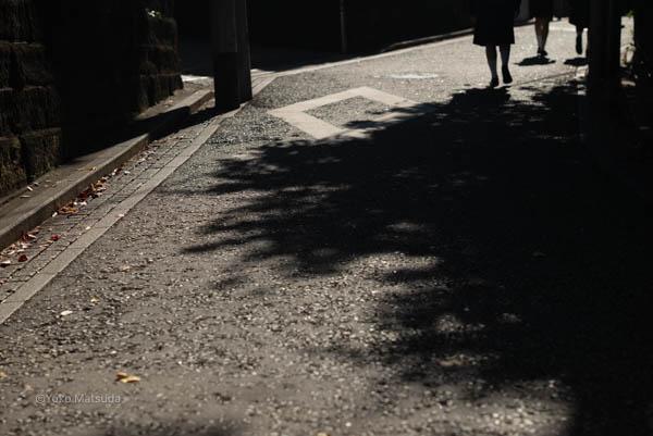道の風景 横浜写真教室