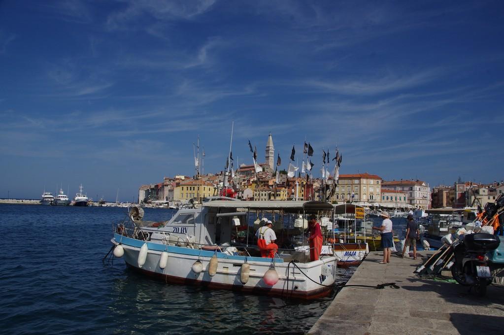 Le port d Rovinj