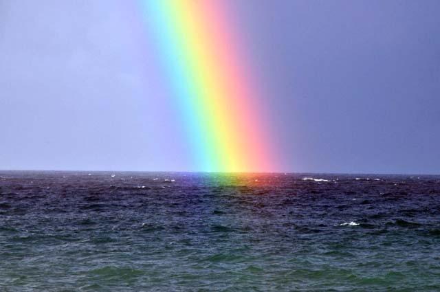 画像:和の素敵 日本の七十二候「虹始見」(にじはじめてあらわる)より引用