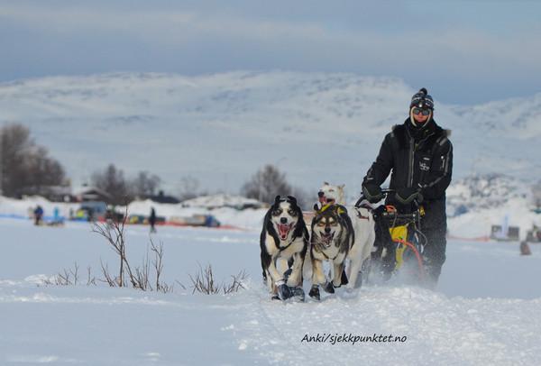 Pasvik Trail 2013