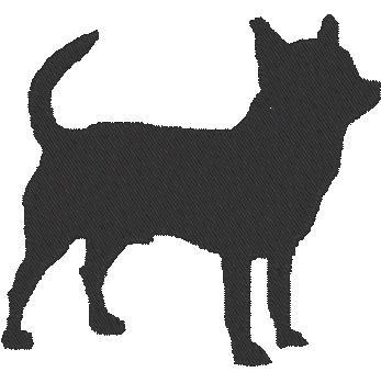 Kurzhaar Chihuahua