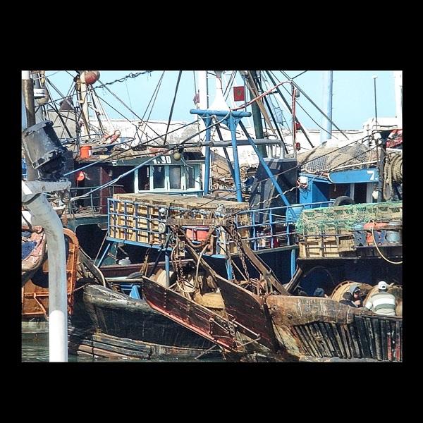Cornelia Hollaender (Germany), Fishing Boats in Essaouira Harbor