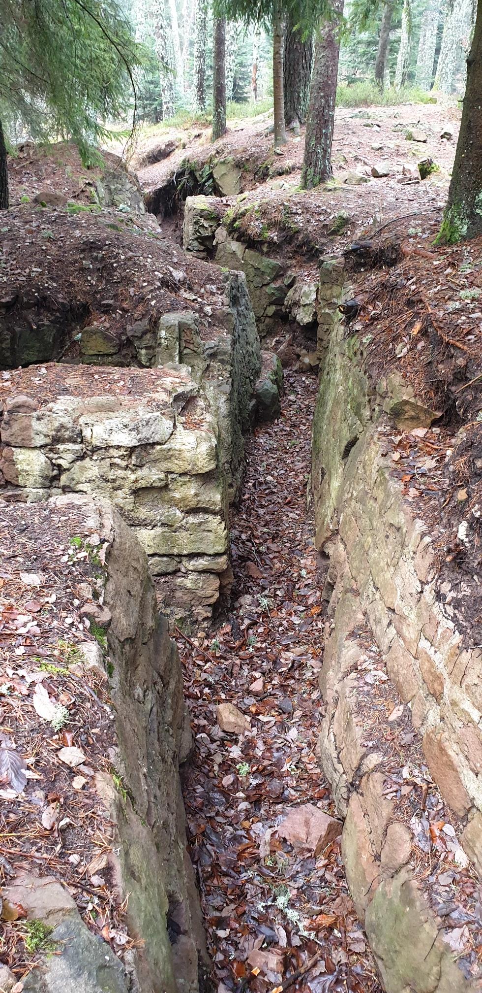 Grabensystem - ein Geisterlabyrinth im Wald