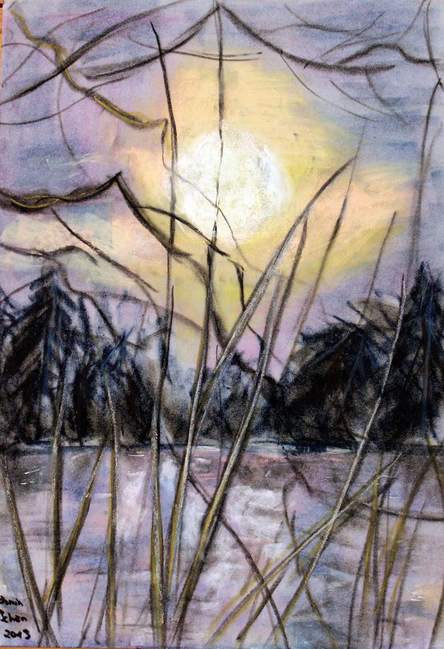 Schönfelder Bergteich, Öl-Pastellkreide auf Velours