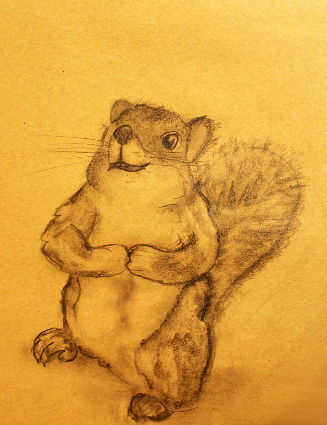 Skizze: Eichhörnchen bettelnd; A4