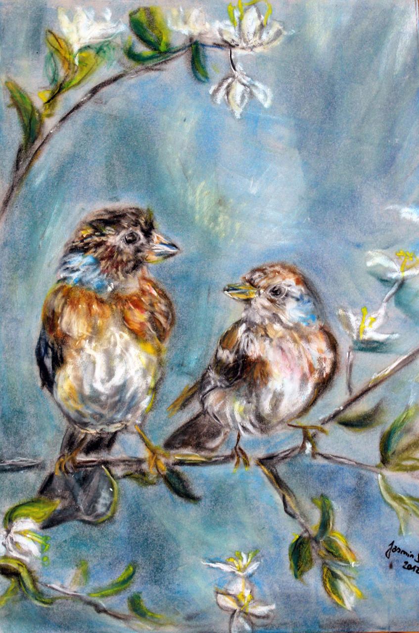 Bergfinken, Öl-Pastellkreide auf Velours