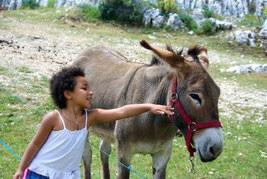 In Frankreich mit einem Esel wandern