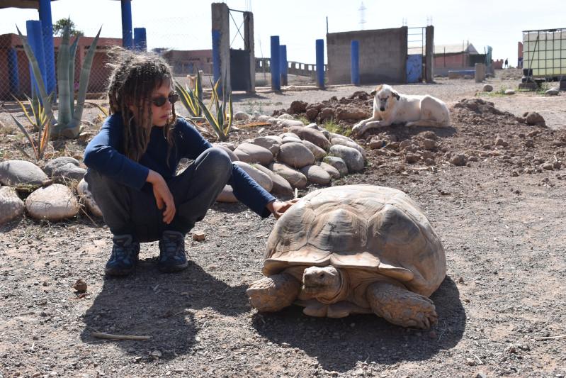 SOS Animaux, bei der Tierhilfsstation, bald mehr dazu