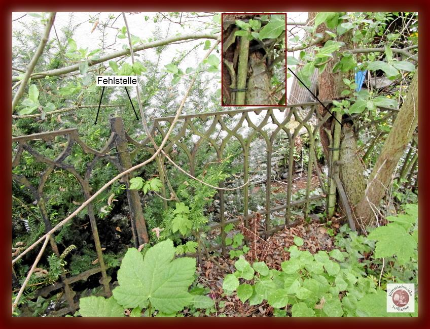 Zaunfeld eingewachsen im Baum und mit Fehlstellen