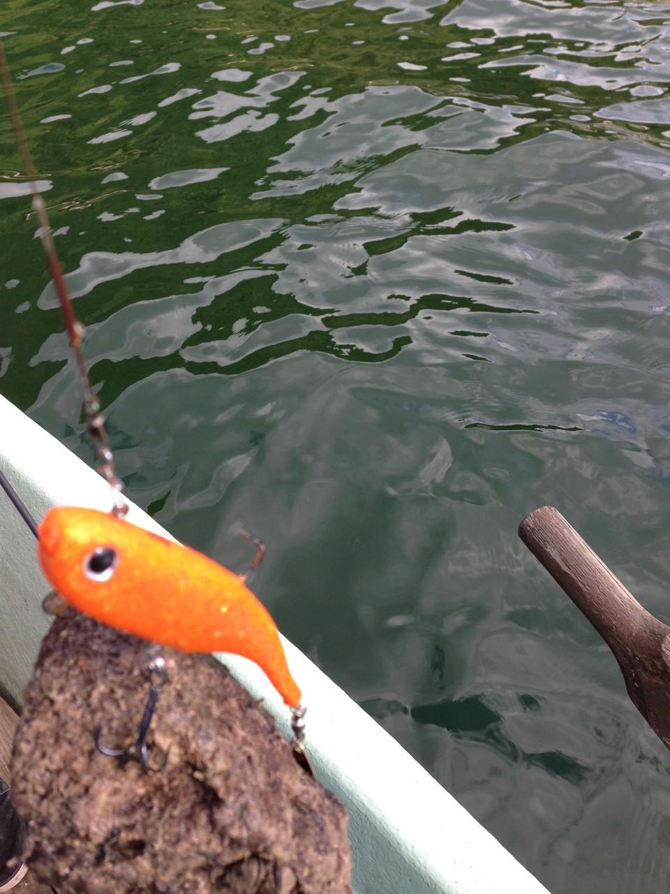 Faute de ramener du poisson autant prendre ce qui traîne au fond