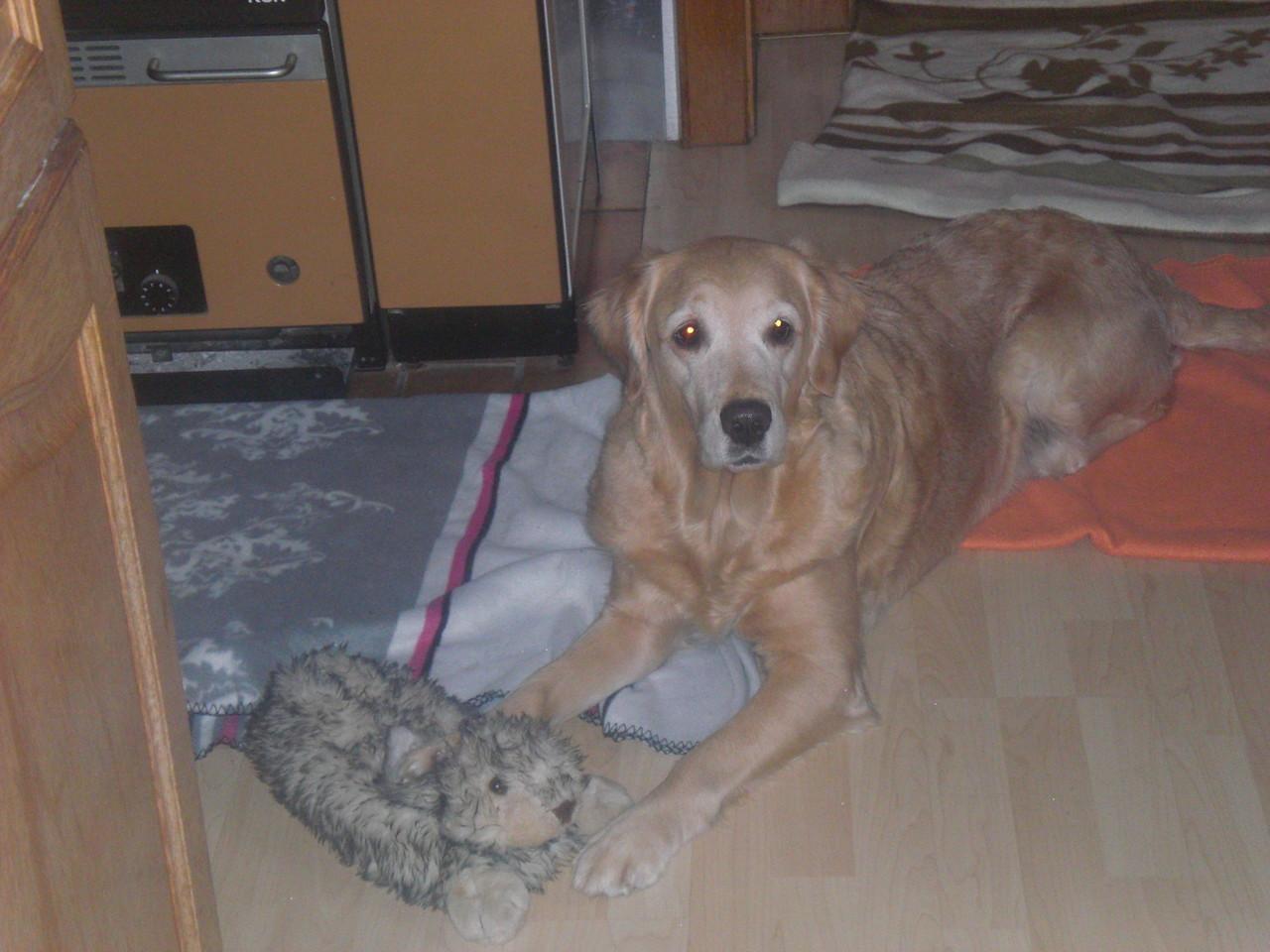 Elly Mami bei Nando zu Haus sie spielt mit dem Hasen von Nando