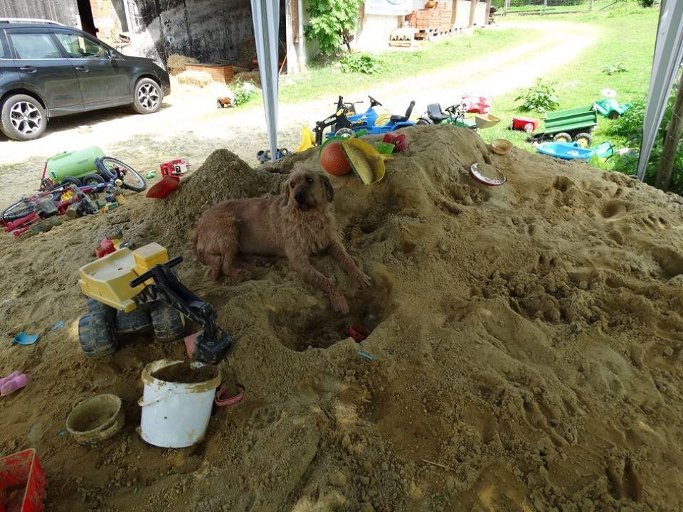 Ach ist Sandburgen bauen herrlich!!