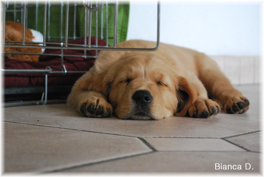 Müde und zufrieden