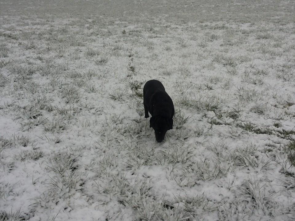 Im Schnee wird sie auch wieder jung!