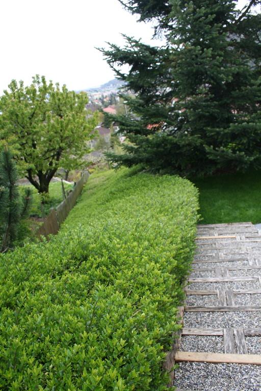 Privatgarten Oensingen