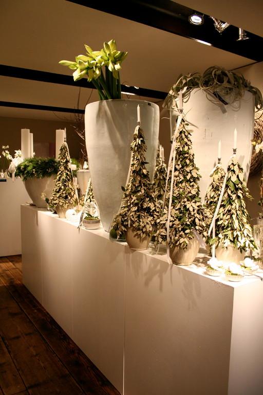 Adventsausstellung 2008 von Arx Blumen & Garten  |  Olten