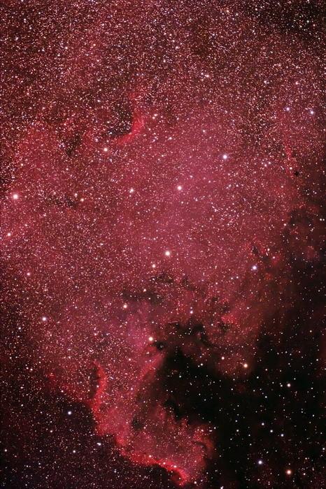 Nebulosa Norteamérica 2008