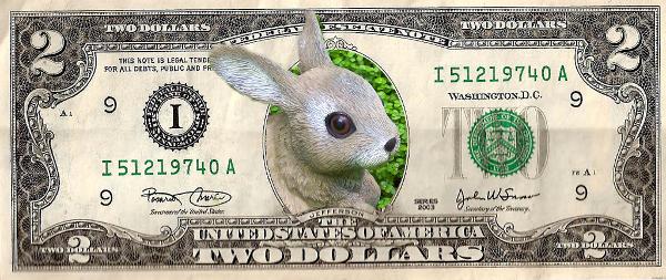 Häschen im Dollar, da kann man viel damit anfangen