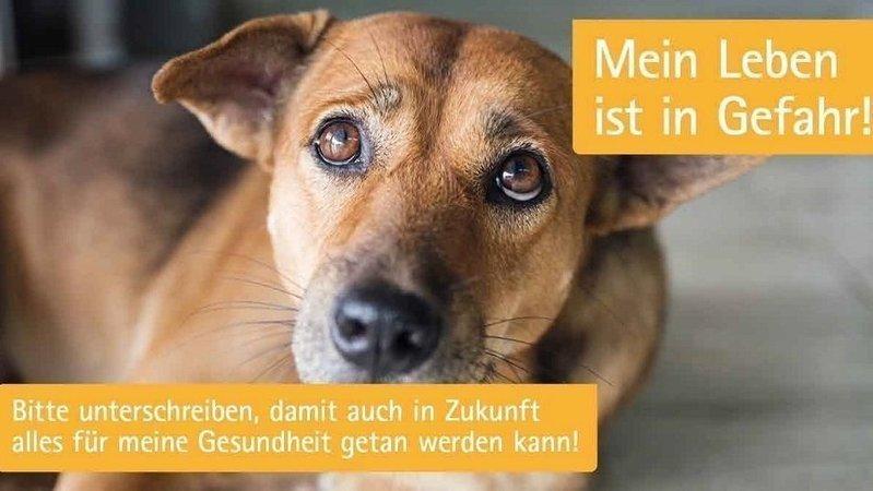 Bitte alle Tierhalter aufgepasst!!!!!
