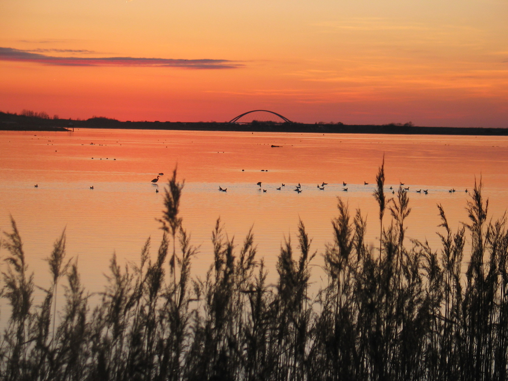 Sonnenuntergang vor der Fehmarnsundbrücke