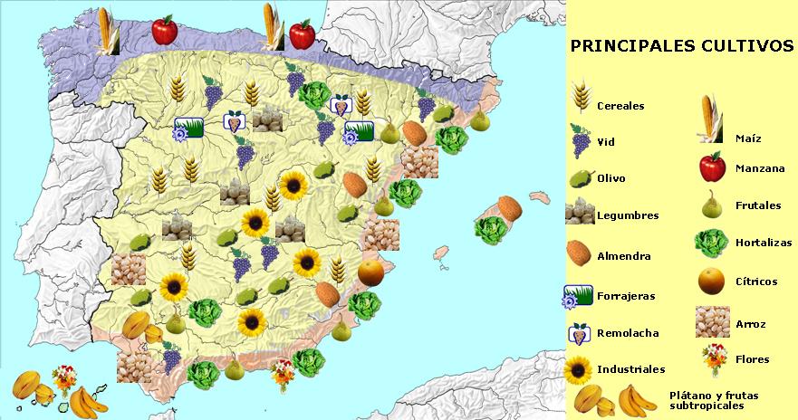 principales productos españoles