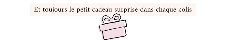 Cadeau offert pour toute commande, cadeau surprise, surprise dans chaque colis, colis surprise.
