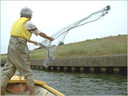 環境アセスメント(河川)