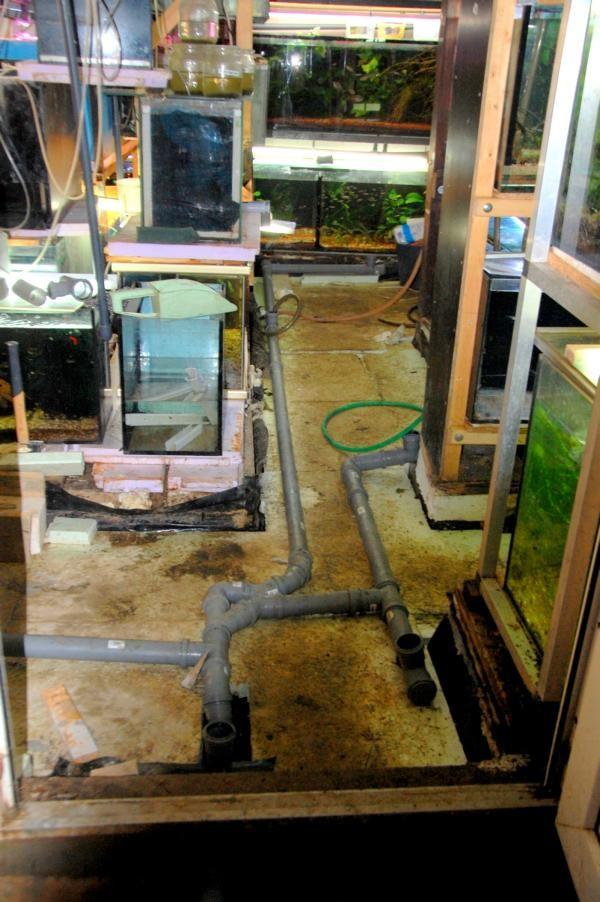 Entfernen der OSB-Platten und der nassen Perlitebodenschüttung