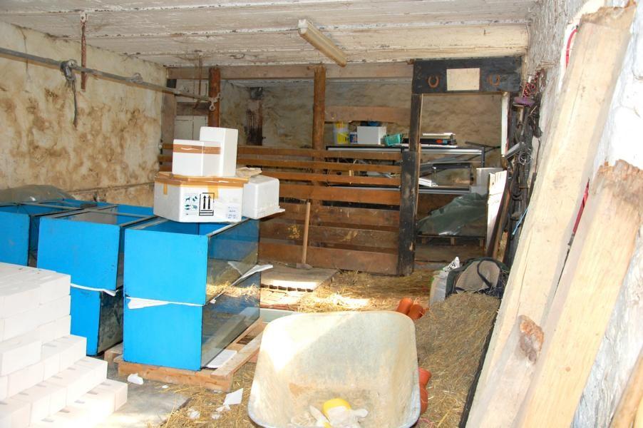 Alte selbstgezimmerte Pferdebox vor Abriss + Aquarien wie wird das mal Aussehen?